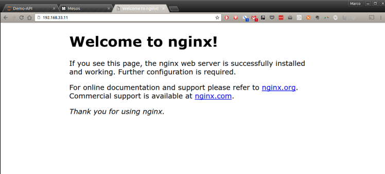 Nginx default home page